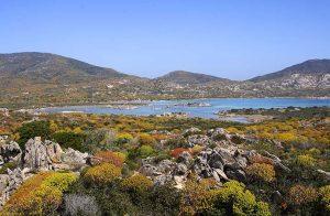 Il Parco dell'Asinara pronto per la stagione estiva 2021, pubblicato il disciplinare per organizzare le visite